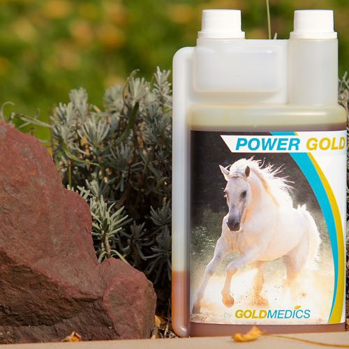 POWERGOLDsupports the horse with muscle building and helps with rehabilitation.